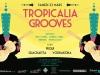 tropicalia grooves